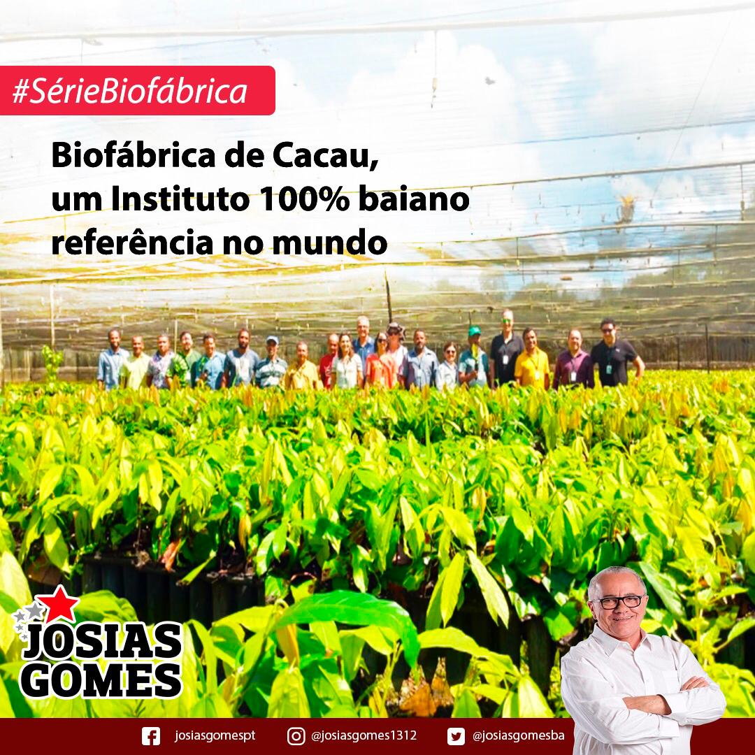 Biofábrica: Orgulho Da Bahia