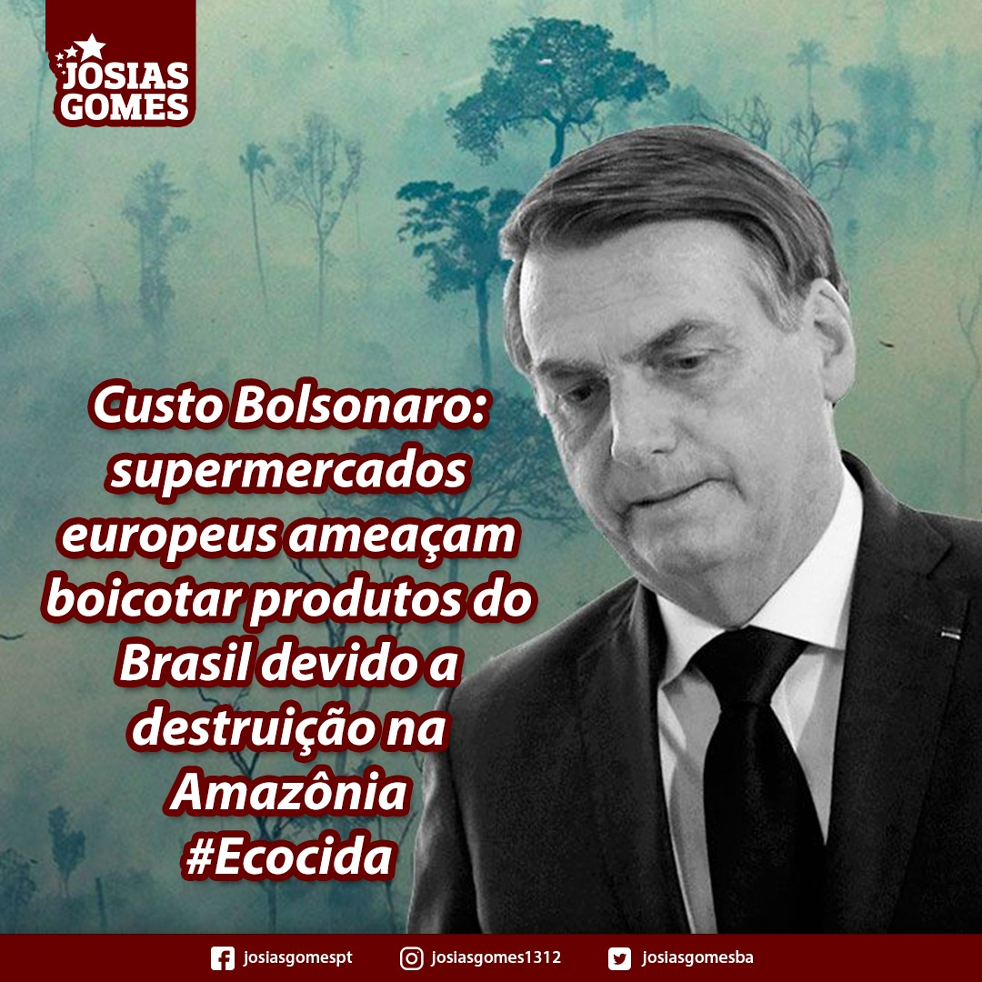 Custo Bolsonaro: Os Empresários Estrangeiros Estão Se Cansando Da Desatenção Do Governo Com O Meio Ambiente