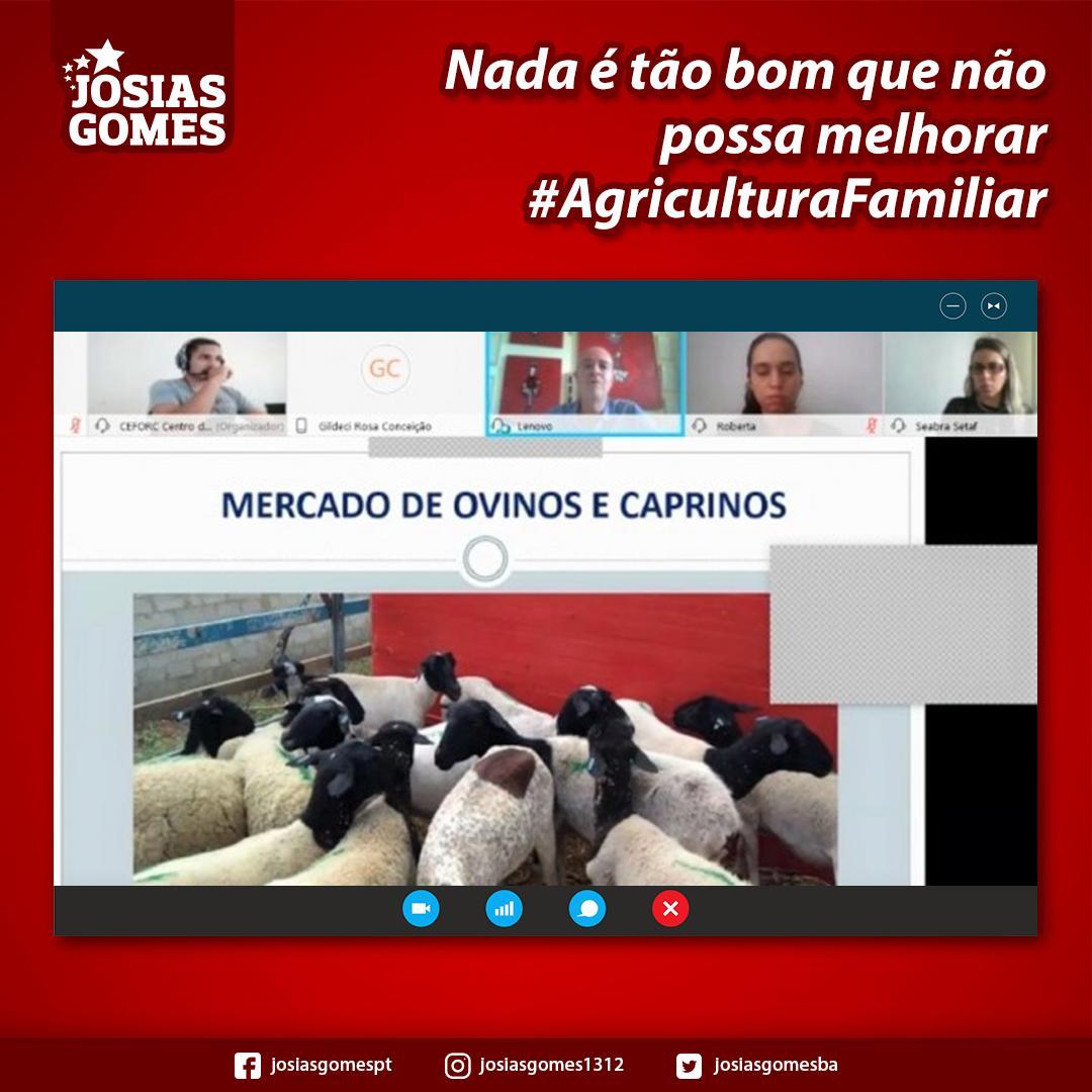 Seminário Virtual Ajuda O Crescimento Da Agricultura Familiar Baiana!