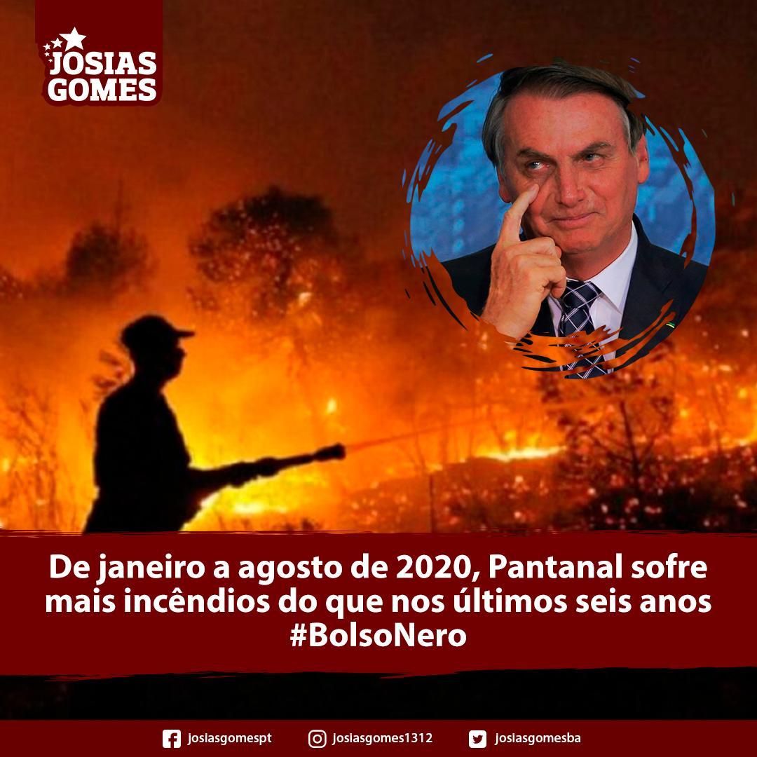 Pantanal é Novo Foco Dos Agressores Ao Meio Ambiente!