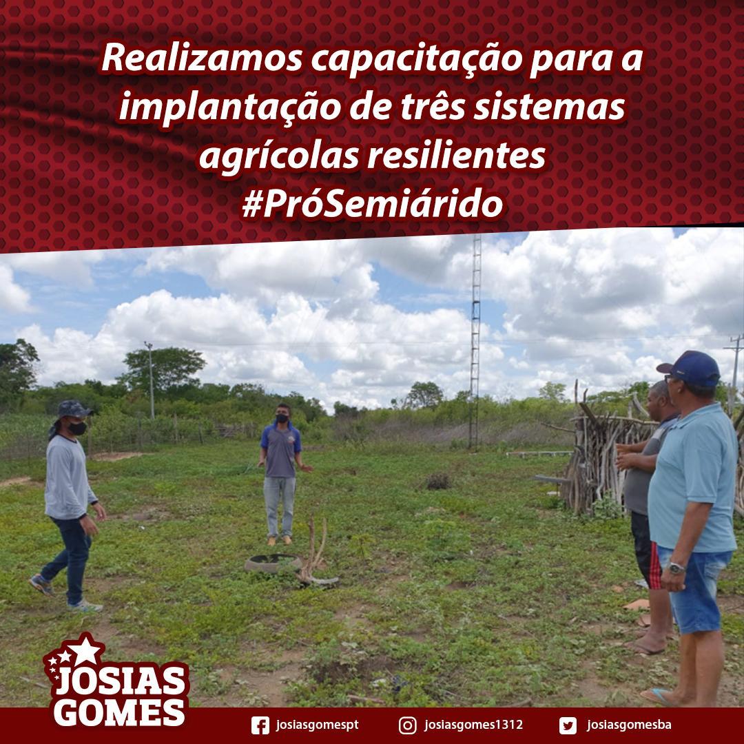 Pró-Semiárido Capacita Sistemas Agrícolas Em Campo Formoso, Casa Nova, E Campo Alegre De Lourdes!